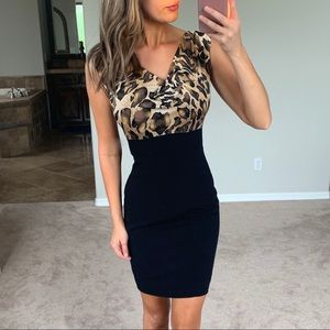 Cache Animal Print Silky Black Brown Sheath Dress